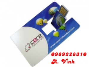 USB Kim Loại Thẻ 01